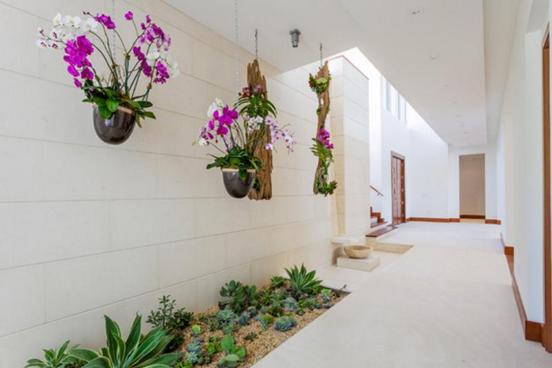 mini jardim de inverno:Jardim de Inverno – Como fazer, dicas e plantas – Vida de Casada