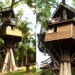 Conheça a Casa na Árvore Luxuosa do Galvão Bueno