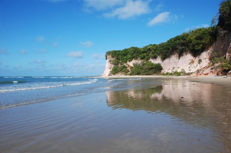 melhores praias do Brasil baia dos golfinhos