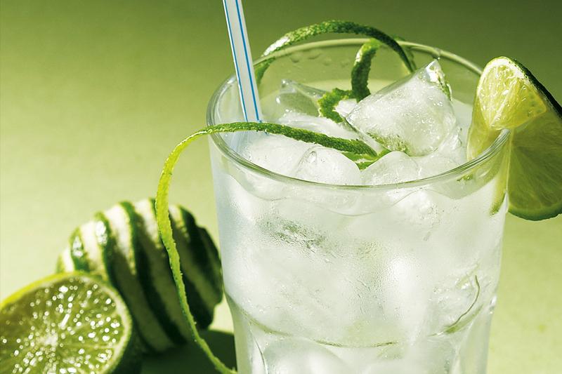 drink para o carnaval gin tonica