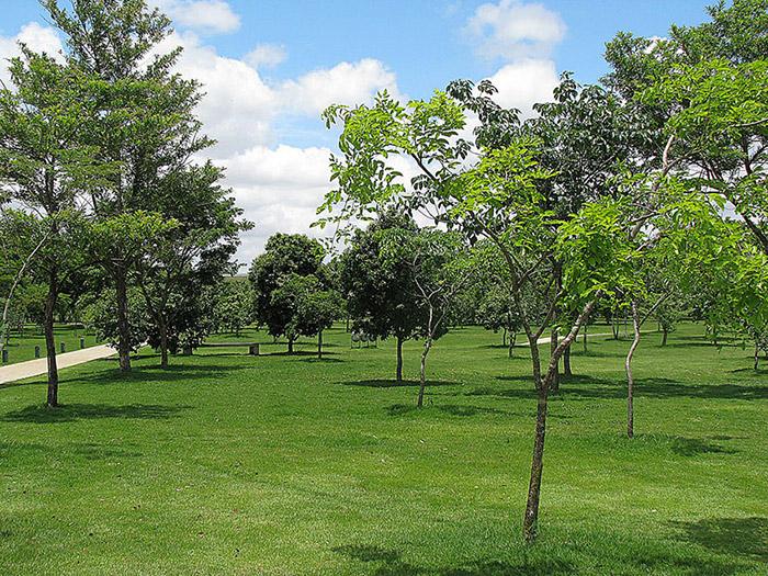 parquecologico