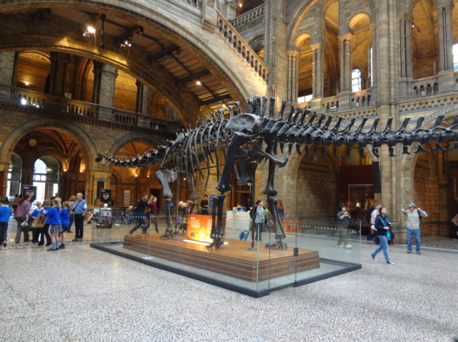 Historia Natural Londres
