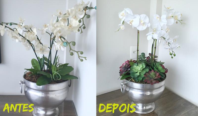 antes e depois flor varanda