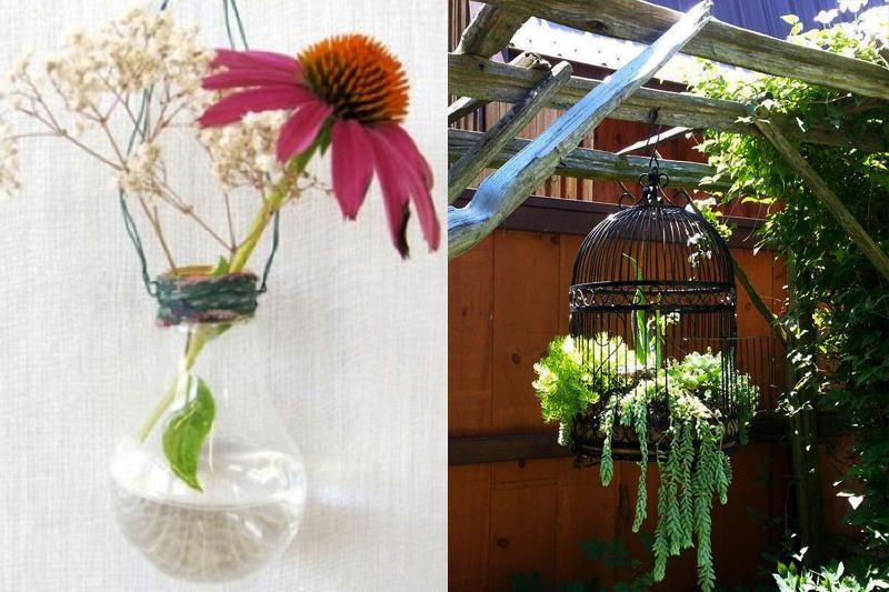 jardim suspenso lampada e gaiola