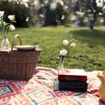 Bodas de Algodão – 15 ideias para comemorar 2 anos de casados