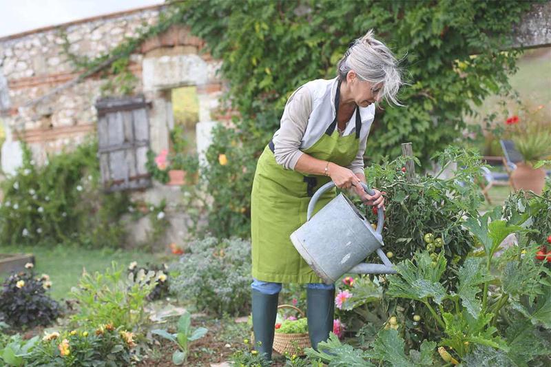 formas de queimar calorias cuidar de um jardim