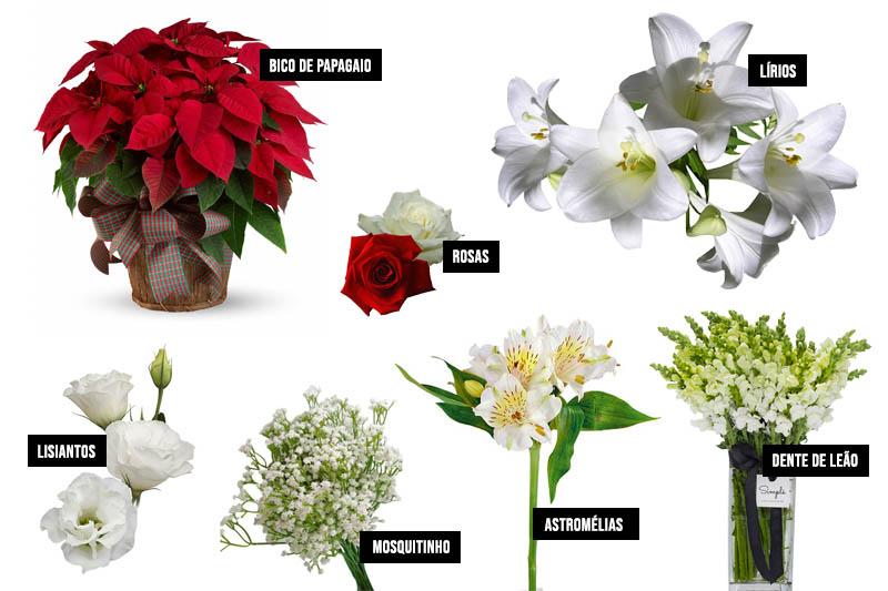 flores para arranjos de Natal