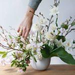 22 Flores para Casa e para Decoração!
