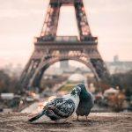 Um Fim de Semana Romântico em Paris: Surpreenda a sua Cara Metade